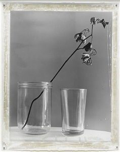 nature morte 10 by jeff cowen