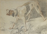 study of a dog by charles joseph natoire