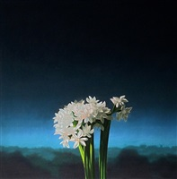 narcissus against evening sky by bruce cohen