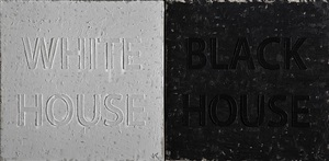 white house / black house by huang rui
