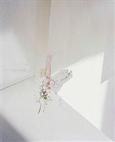 untitled #25, from ill form & void full by laura letinsky
