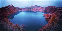 let love in by richard mosse