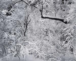 fresh snow, yosemite valley, california by ansel adams