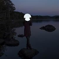 sadie and the moon by cig harvey