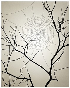 untitled by chema madoz