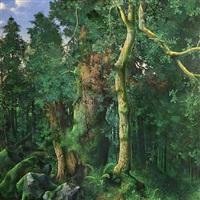 interno di bosco by maurizio bottoni