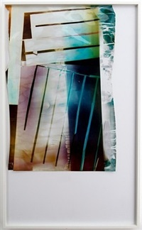 artwork 83 by mariah robertson