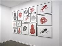 untitled drawings by peter kogler