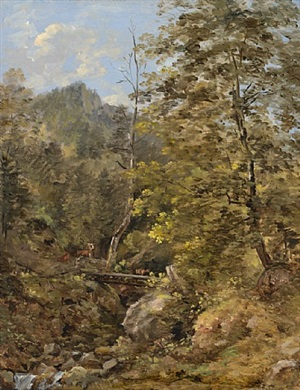 a mountain stream in the bavarian alps by georg maximilian johann von dillis