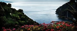 portofino flowers by david drebin
