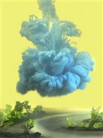 one of a kind 13ba by kim keever