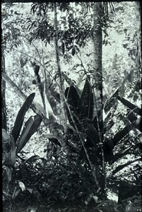 landschaft nr. 1 by luzia simons