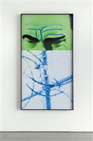raised eyebrows/furrowed foreheads: fence (with barbed wire) by john baldessari