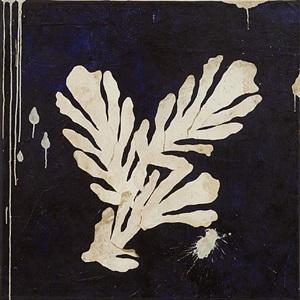bouquet d'acanthes by pierre marie brisson
