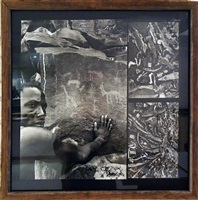 three photographs joined together by peter beard