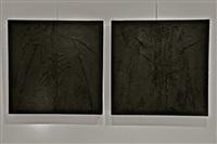 grog nero (diptych) by mario arlati