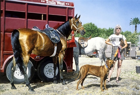 western tableau with rhodesian ridgeback (trials west), by richard mclean