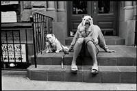 usa. new york city. 2000. by elliott erwitt