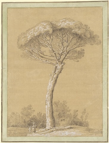 a pine near genzano by jacob philipp hackert
