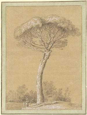 a pine near genzano by jacob philipp hackert