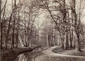 pathway by stream in the bois de boulogne by charles marville