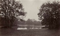 scene in the bois de boulogne by charles marville