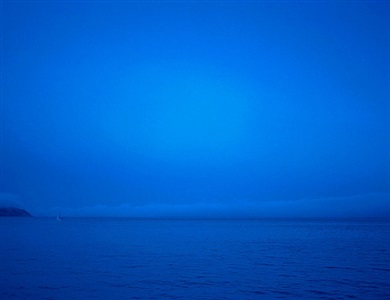 blue fog by carol fondé