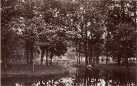 stream of armenonville, bois de boulogne by charles marville