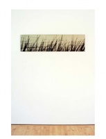 deep creek grass by ray charles white