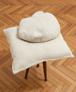 pillow by tanja roscic