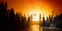 california forest fire by lori nix