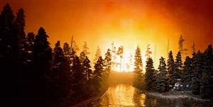 california forest fire by lori nix