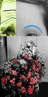 raised eyebrows/furrowed foreheads: bouquet by john baldessari