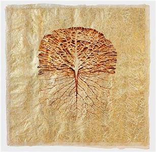reticulae natura ii by javier pérez