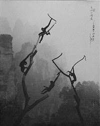 gibbons at play, tianzi mountains, guilin, china by don hong-oai