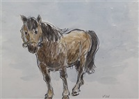 bay mountain pony by sir kyffin williams