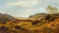 cannock chase near penkridge by henry w. henley