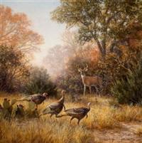 texas wildlife by grant macdonald