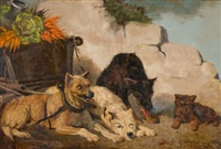 dogs with vegetable cart by vincent de vos