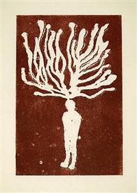 metamorphose by manuel amorim