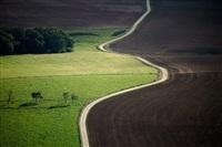 road splits field, lorraine region, france by alex s. maclean