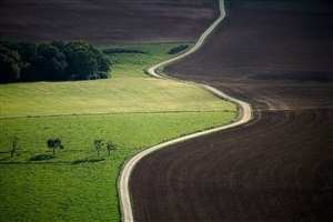 road splits field, lorraine region, france by alex s. maclean