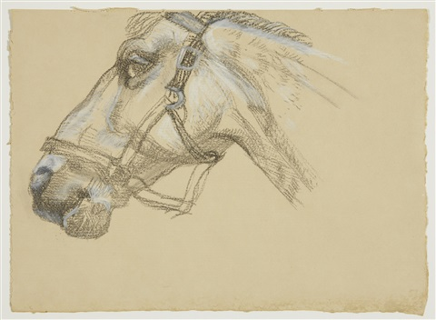 head of success ii by lucian freud