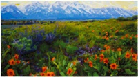 wildflower overlook by timothy tompkins