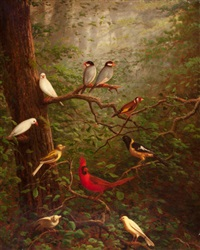 woodland birds by charles cole markham