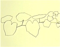 plant drawings by ellsworth kelly