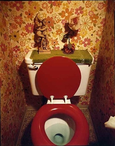 red toilet, from suburbia by bill owens