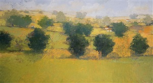 pastures by paul balmer