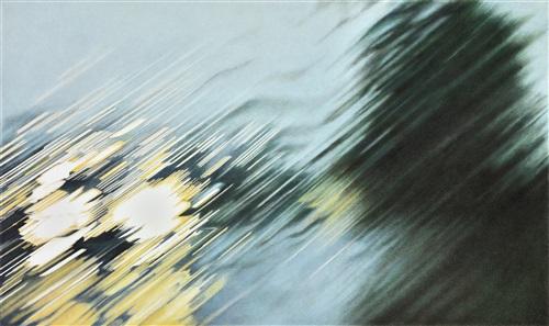 mulholland drive xi by elizabeth patterson
