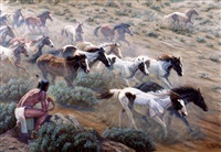 wild mustangs by gregory perillo